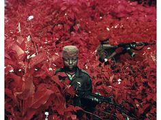 Richard Mosse | Photography #mosse #photography #aerochrome #infrared