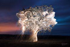 Dripping with light, Vitor Schietti
