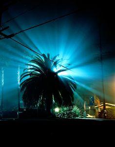 Venice, CA. | Amanda Friedman Photography #night #landscape