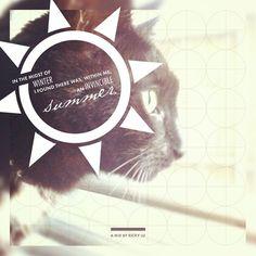 http://longhairandmustacheclub.tumblr.com/