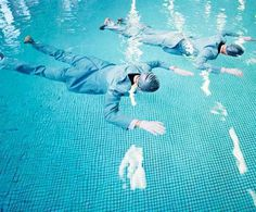 Mimicry by Maurits Giesen and Ilse Leenders #inspiration #photography #colorful