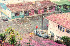nick meek photographs costa rica covered in flower petals for sony #pink #rica #petals #costa