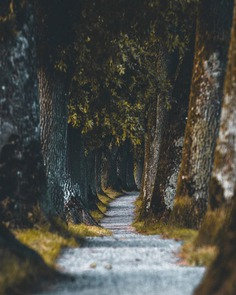 Moody and Cinematic Travel Photography by Tom Juenemann