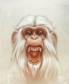Looks like good Illustrations by Lukas Brezak #painting #monkey