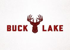 Branding 10,000 Lakes #lake #logo #wordmark