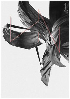 Tumblr #flower #lines #grey