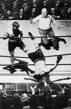 W E L L ※ F E D #blood #champion #violent #boxing #knockout
