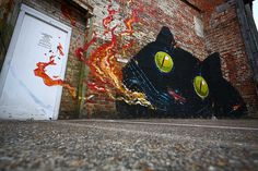 hitnes | Tumblr #chichester #cat #hitnes