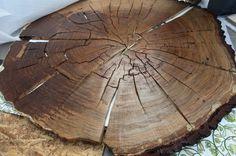 CJWHO ™ (Aged Oak Tree Rings Symbolize Life and Inevitable...)
