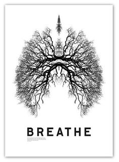 FFFFOUND! | 848246317_e4027c95ba_b.jpg (JPEG Image, 749x1024 pixels) #breathe