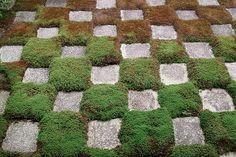 SDIM3607 | Flickr - Photo Sharing! #stones #chess #japan #grass