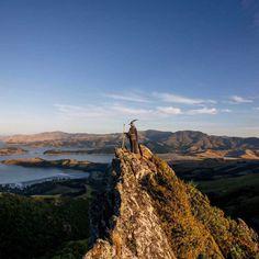 #GandalfTheGuide: Akhil Suhas Explores New Zealand with Gandalf Costume