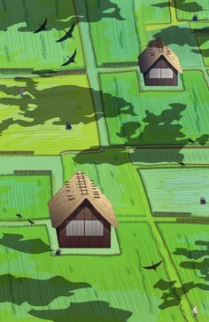 """""""Paddy rice field"""" #Japan #field #agriculture #decor #cultive #rice #birds #houses #traditional #decor #illustration"""