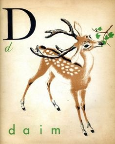 Oh Deer / Deer #illustration #graphic #art