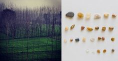 INFECTED GALLERY – Welcome #nature #stones #tree #green