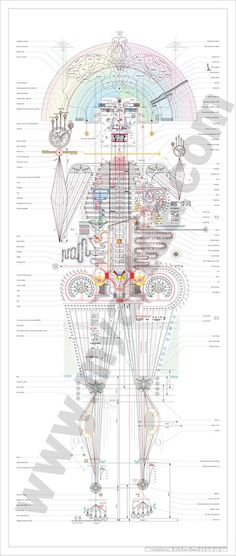 Minjeong An #self #infographic #portrait #personal