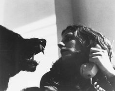 Joe Dante, The Howling, 1981 #teeth #werewolf #white #dante #howling #horror #black #the #1981 #joe #still