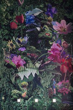 Pretty please Bar Club Melbourne Travis Walton 9 #wallpaper #floral #patern