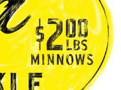 $2 Minnows