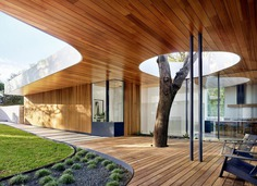 Constant Springs Residence - A Home Built Around a Tree