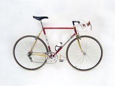 photo1.jpg #bicycle #colnago #bike #gold