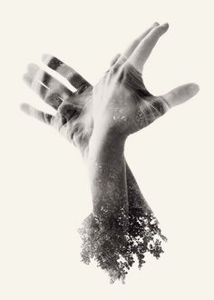 Colossal | An art and design blog. | Page 3 #photography #hands
