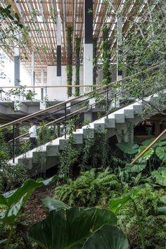 Stairs Perez Art Museum Miami, Herzog & DeMeuron