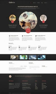 Gallerise - Photoshop - Creattica #web
