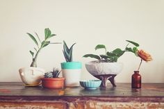 Eat Drink Chic #spots #ceramic #plants