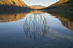 Circular Installations in Nature-11 #nature