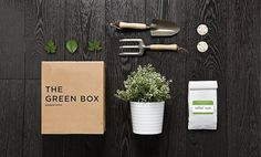 All sizes | futura4 | Flickr - Photo Sharing! #identity #box #green