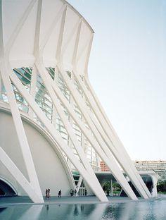 CJWHO ™ (Príncipe Felipe Science Museum / SANTIAGO...)