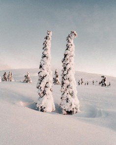 Majestic Landscapes of Finnish Lapland by Anna-Elina Lahti