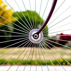 FFFFOUND! #photography #bicycle #spoke