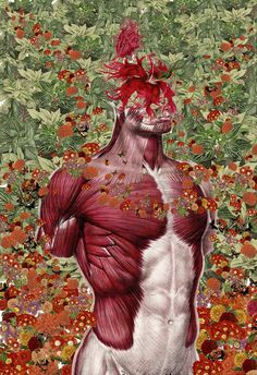 Anatomical Collages by Travis BedelMarch 14 #illustration #art #collage #anatomy