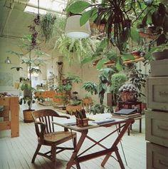 FFFFOUND! | tumblr_lj72ivQjQs1qzyxjro1_500.jpg 500 × 504 Pixel #plants