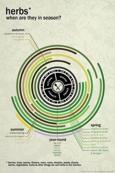Explore – Absolutely gorgeous minimalist infographics of...