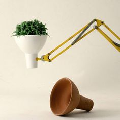 Lamp with identity issues. #lamp #plant