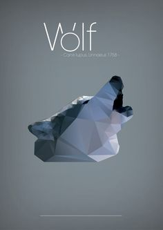 Polygonal illustrations #illustration #art #polygon #wolf