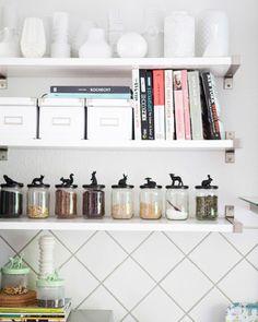Animals on jars on shelves