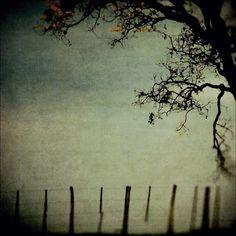 Into Infinity, Frozen Memory, Artwork by Leda Siloto #tree