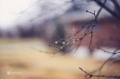 Photographer Jordan Parks #inspiration #photography