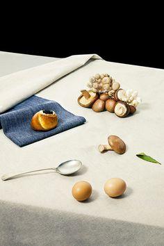 Photography by Lena Emery #still #mushrooms #photography #life