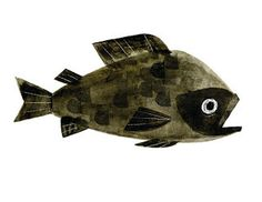 Chris Sasaki #illustration #fish #painting