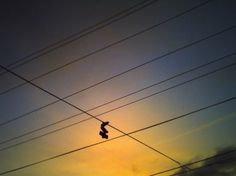 dust breeding » Archives » 351 / lines in the sky (+ two more things) #lines #shoes #sky #wires #sunset