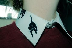neckband #fashion #collar #cat