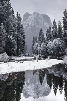 Photography #yosemite #winter #image #bw #reflected
