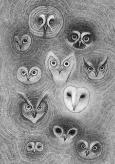 35_owl wall #illustration #pencil #owls #drawing