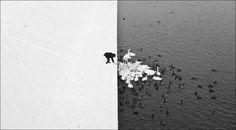 http://i.imgur.com/MmWl5y6.jpg #winter #black and white #krakow