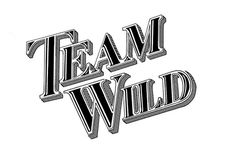 Team Wild #logo #lettering #chalk